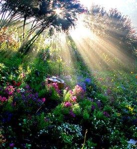 god-sun-rays-god-the-creator-10683289-600-653