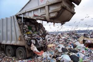 Trash Dump